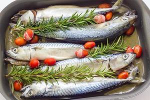 makreel gebakken met tomaten foto
