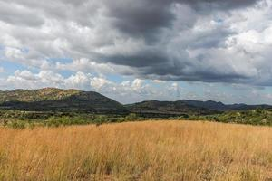 Pilanesberg Nationaal Park. Zuid-Afrika. 29 maart 2015 foto