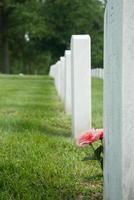 bloemen op het graf foto