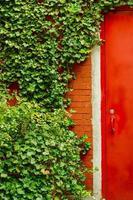 rode deur en wijnstokken foto