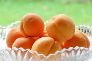 abrikoos foto