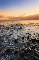 zeegezicht en golf in Kaapstad