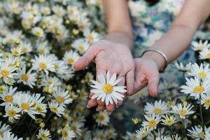 bloem op je hand foto