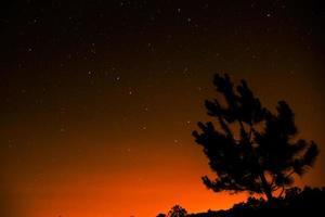 sterren in de schemering foto