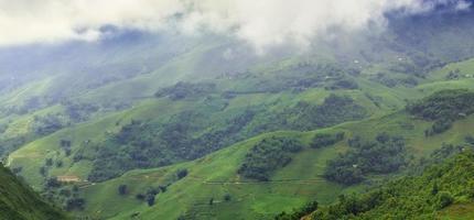 groen terrasvormig rijstveld in sapa, lao cai, vietnam foto