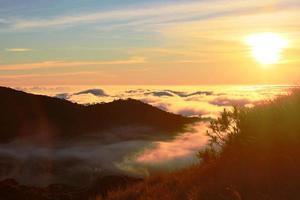 gouden zonsondergang foto