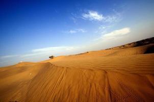woestijn, zandduinen bij zonsondergang