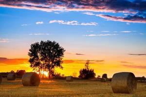 zonsondergang veld foto