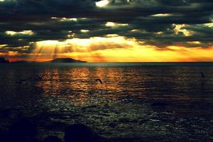 zeegezicht tijdens zonsondergang foto