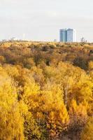 geel bos en appartementengebouw in herfstdag foto