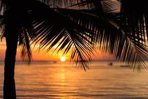 zonsondergang strand achtergrond foto
