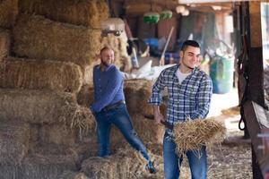 twee boeren die in de schuur werken foto