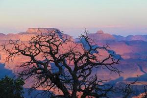 grand canyon zonsondergang foto