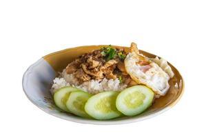 rijst met knoflook kip gebakken en gebakken ei. foto