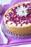 taart met kwark en aalbes foto