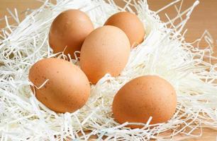 verse eieren foto