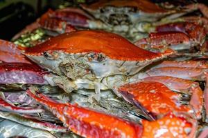 hele krabben gekookt foto