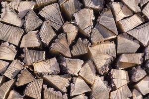 brandhout foto