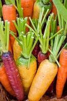 organische groenten foto