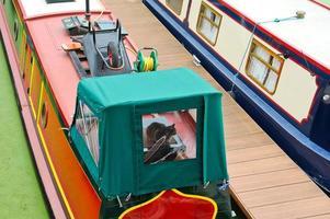kat op een woonboot foto