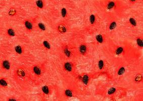 rode textuur van watermeloen foto