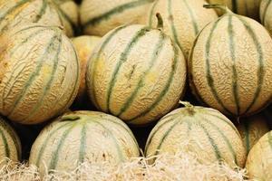 meloenen foto