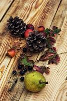 herfst fruit foto