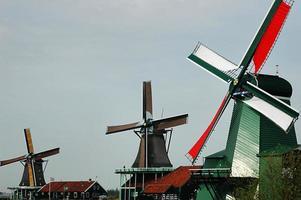 windmolens op de zaanse schans foto