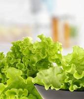 groene salade foto