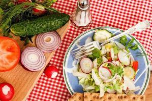 lente salade met radijs, komkommer, kool en ui close-up