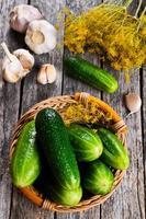 komkommers voor conserven foto