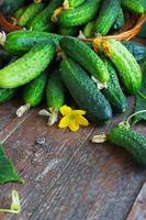 oogst komkommers in een mand op de houten achtergrond