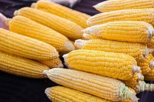 weinig gele maïs