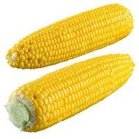 maïs geïsoleerd op een witte achtergrond. met uitknippad foto