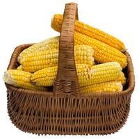 maïs mand. foto