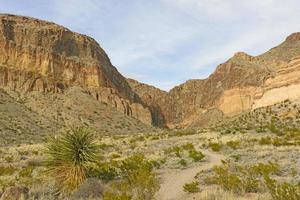 afgelegen pad in de woestijn foto