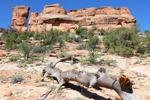 Colorado nationaal monument foto