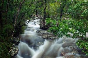 overstroming van de rivier foto