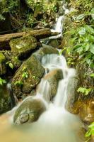 prachtige rivier foto