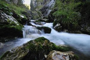 rivier stroomt foto
