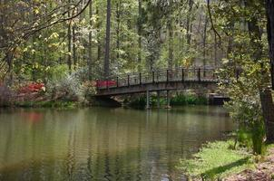 callaway bridge foto