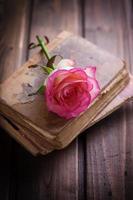 romantische achtergrond. foto