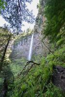 Watson Falls, Oregon foto
