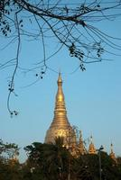 shwedagon pagode, yangon. foto