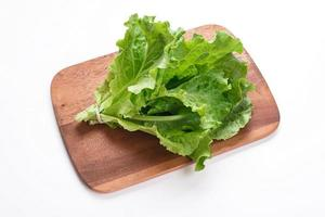 bosje salade foto