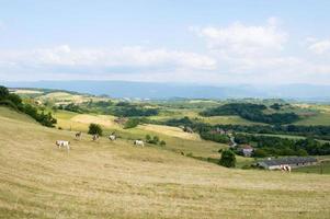 frans landschap foto