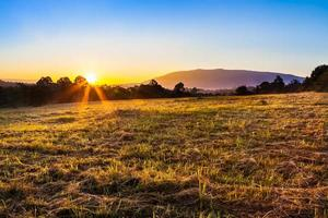 prachtig landschap foto