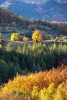 kleurrijke herfst landschap foto