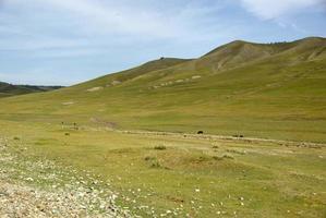 landschap in Mongolië foto
