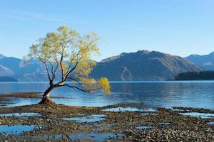 schilderachtig landschap foto